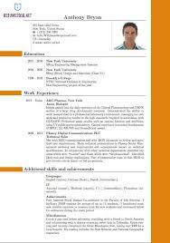 Resume New Format Resume Sample