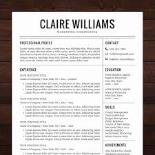 Cv Profile Examples Free Unique A Instant Download A Resume
