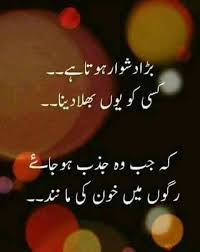 poetry image 3655 best poetry images on pinterest urdu poetry poetry quotes