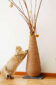 diy cat scratching vase
