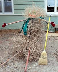 Small Picture 20 best Tumbleweed Fun and Uses images on Pinterest Weed