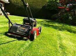 lawn ranger s walt crowder digs the
