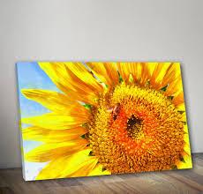 beautiful looking sunflower wall decor close up canvas sunflowers art flowers poster homeshopart for kitchen metal on diy sunflower wall art with sunflower wall decor for kitchen sudaak