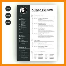Awesome Resume Templates Free Template For Everyone Download And
