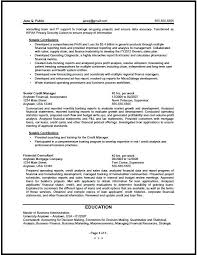 financial analyst resume summary gse bookbinder co financial analyst resume summary