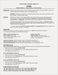 Hybrid Resume Format Examples Free Resume Examples