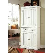 wayfair storage cabinet
