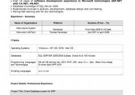Software Developer Resume Samples Inspiration Software Programmer ...