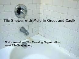 shower tile grout sealer bathroom tile cleaning bathroom grout sealer shower grout lovely cleaning grout in shower tile grout sealer