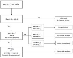 Hep B Serology Chart Reactivation Of Hepatitis B After Liver Transplantation