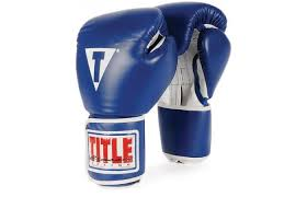 Title Boxing Pro Style Gloves Reviewed
