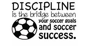 "Amazon.com: DS Inspirational Decals Soccer Decal   Discipline   Goals Success   Vinyl Wall Decal   Children Sports Decor   20""x12"": Home & Kitchen"