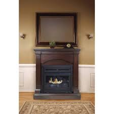 pleasant hearth fireplace doors screens company how to install glass door replacement fir free standing