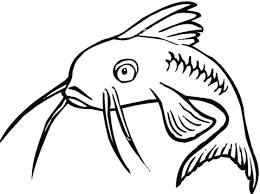 Disegno Di Pesce Gatto Triste Da Colorare Disegni Da Colorare E
