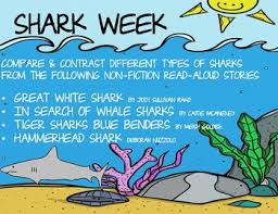 Types Of Sharks Chart Shark Week Reading Chart Compare Contrast 4 Non Fiction Books Summer School