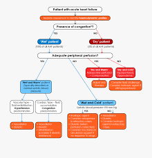 A Flow Chart Showing The Management Of Patients With Acute