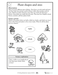 .worksheets with answers for chapter 7 in pdf format to download prepared by expert science register online for science tuition on vedantu.com to score more marks in your examination. Worksheets Word Lists And Activities Greatschools Plants Worksheets Science Worksheets Plants Kindergarten