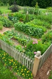 Small Picture The 25 best Vegetable garden design ideas on Pinterest Vege