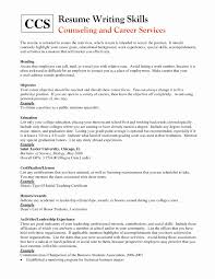Leadership Skills Resume Skills On A Resume Examples Unique Special Skills Resume Examples 22