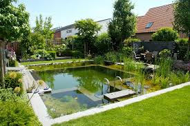 natural looking in ground pools. Natural Pool With Plants Water Garden Pond Rustic NSP By BioNova, NJ Looking In Ground Pools