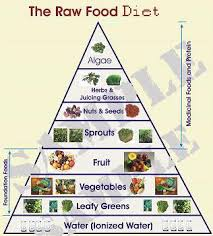 Organic Raw Food Nutrition