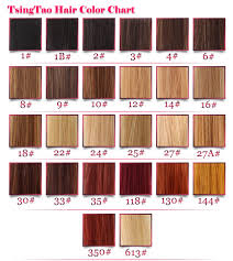Lace Wig Hair Color Chart Lace Wigs Hair Color Chart