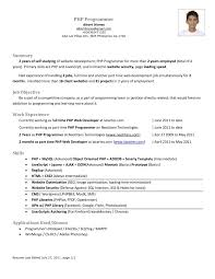 Php Web Developer Resume] Web Developer Resume Template 11 Free .