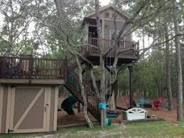 kids tree house plans designs free. Cool Tree House Plans Without A Contemporary - Ideas . Kids Designs Free