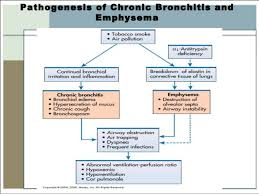 Pathophysiology Of Emphysema Flow Chart Lecture 5 Asthma And Copd