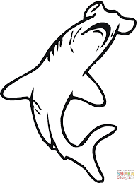 Hammerhead Shark clipart line drawing - Pencil and in color ...
