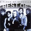 Best of A Flock of Seagulls [Direct Source]