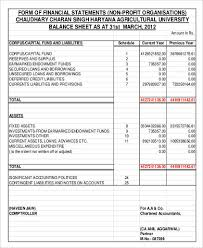 sample balance sheet for non profit non profit balance sheet 8 examples in word pdf