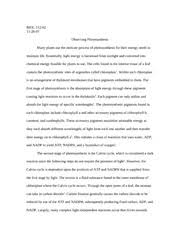 bio lab photosynthesis essay biol observing  bio lab photosynthesis essay biol 112 02 observing photosynthesis many plants use the intricate process of photosynthesis for their energy needs to