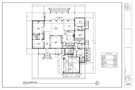 i will draw floor plan or sketch in revit