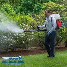 Big Blue Bug Solutions Big Blue Bug Solutions Pest Control 1486 Broadway South