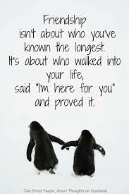 Great Friends Quotes Amazing Best 48 Quotes Images Of Friendship Quotes And Humor