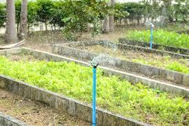 garden irrigation system sprinkler garden irrigation system watering law stock photo garden irrigation systems installers sydney