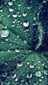 Iphone Water Drop Wallpaper