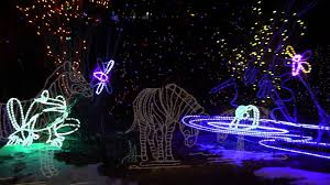 Denver Zoo Holiday Lights Things To Do In Denver This Friday Saturday And Sunday