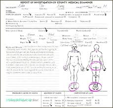 Autopsy Report Template Body Diagram From Chartreuse