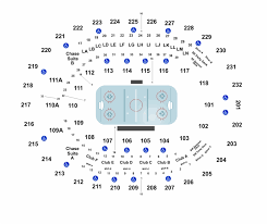 Florida Everblades Seating Chart Orlando Solar Bears Vs Florida Everblades Tickets On Amway