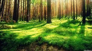 Nature Desktop Backgrounds Free ...