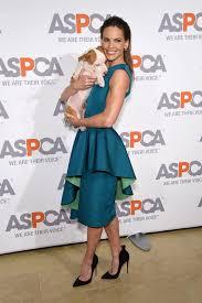 Hillary Swank Hilary Swank 2015 Aspcas Bergh Ball In New York City