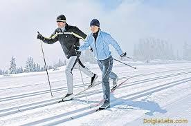 Польза лыжных прогулок и о видах лыжных ходов  Виды лыжных классических ходов