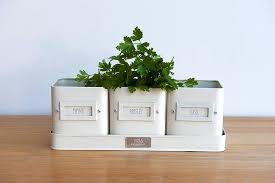 kitchen herb pots by freshly forked | notonthehighstreet.com On the window  sill