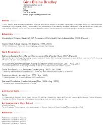 Profile Resume Example Techtrontechnologies Com