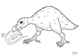Small Picture Coloring Pages Animals Lizard Coloring Pages Two Lizards Lizard
