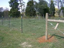 wire fence designs. Plain Wire This Wire Fence Uses Standard Steel Posts To Wire Fence Designs S