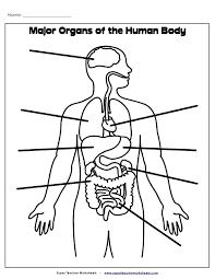 slide 1 728 printable human body worksheet on super teacher worksheets main idea