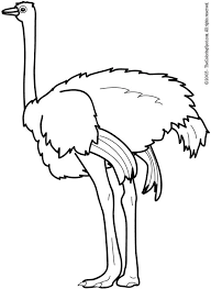 Small Picture ostrich coloring pages 8 Clipart Panda Free Clipart Images